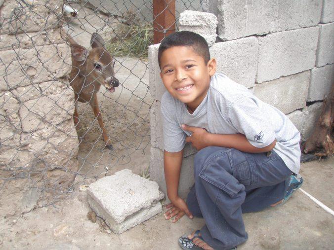 Noel & Bambi